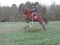 cce-la-salantine-poney-2-mars-201-18-jpg
