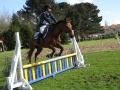 cce-la-salantine-poney-2-mars-201-26-jpg