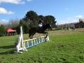 cce-la-salantine-poney-2-mars-201-31-jpg