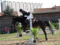 cce-la-salantine-poney-2-mars-201-33-jpg