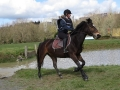 cce-la-salantine-poney-2-mars-201-4-jpg