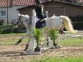 cce-la-salantine-poney-3-mars-2013-109-jpg