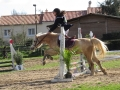 cce-la-salantine-poney-3-mars-2013-111-jpg