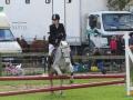 cce-la-salantine-poney-3-mars-2013-112-jpg