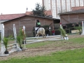 cce-la-salantine-poney-3-mars-2013-115-jpg