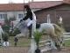 cce-la-salantine-poney-3-mars-2013-119-jpg