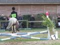 cce-la-salantine-poney-3-mars-2013-121-jpg