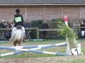 cce-la-salantine-poney-3-mars-2013-122-jpg
