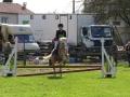 cce-la-salantine-poney-3-mars-2013-131-jpg