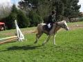 cce-la-salantine-poney-3-mars-2013-132-jpg