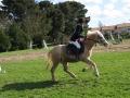 cce-la-salantine-poney-3-mars-2013-133-jpg