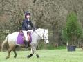 cce-la-salantine-poney-3-mars-2013-45-jpg