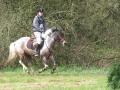 cce-la-salantine-poney-3-mars-2013-53-jpg