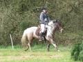 cce-la-salantine-poney-3-mars-2013-54-jpg