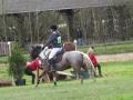 cce-la-salantine-poney-3-mars-2013-69-jpg