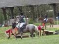 cce-la-salantine-poney-3-mars-2013-71-jpg