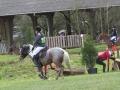 cce-la-salantine-poney-3-mars-2013-72-jpg