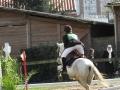 cce-la-salantine-poney-3-mars-2013-91-jpg
