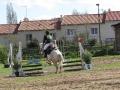 cce-la-salantine-poney-3-mars-2013-94-jpg
