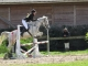 Poney Elite Kaouette