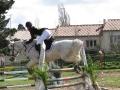 cce-la-salantine-poney-elite-mars-2013-15-jpg