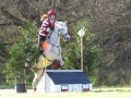 cce-la-salantine-poney-elite-mars-2013-25-jpg