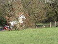 cce-la-salantine-poney-elite-mars-2013-28-jpg