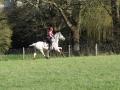 cce-la-salantine-poney-elite-mars-2013-32-jpg