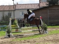 cce-la-salantine-poney-elite-mars-2013-4-jpg