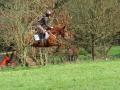 cce-poney1-mars2013-0-jpg