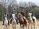 cce-poney1-mars2013-14-jpg