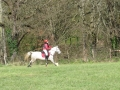 cce-poney1-mars2013-25-jpg