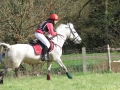 cce-poney1-mars2013-27-jpg