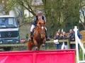 cce-poney1-mars2013-3-jpg
