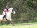 cce-poney1-mars2013-31-jpg