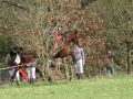cce-poney1-mars2013-37-jpg