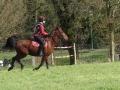 cce-poney1-mars2013-38-jpg