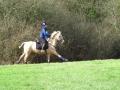 cce-poney1-mars2013-5-jpg