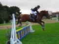 cce-poney1-mars2013-8-jpg